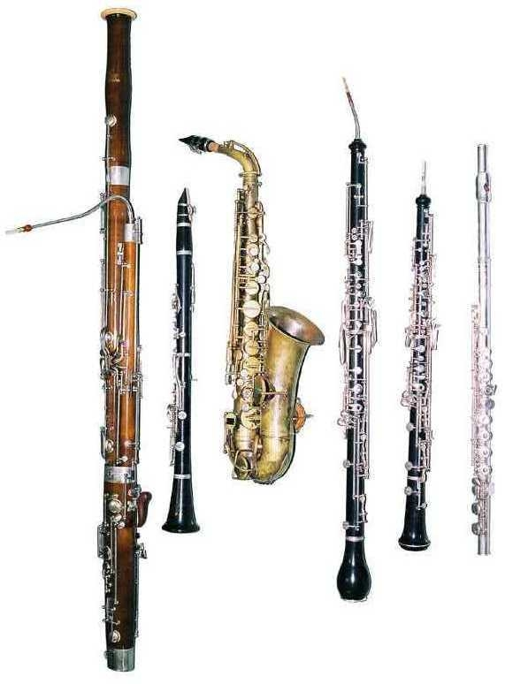 an analysis of the instrument bassoon in oboe family Synonyms for woodwind instrument: wood, woodwind, band, basset horn, basset oboe, bassoon, big band, bombard, brass, brass band, brass section, chamber orchestra, clarinet, combo, concert band, contrabassoon, cromorne.