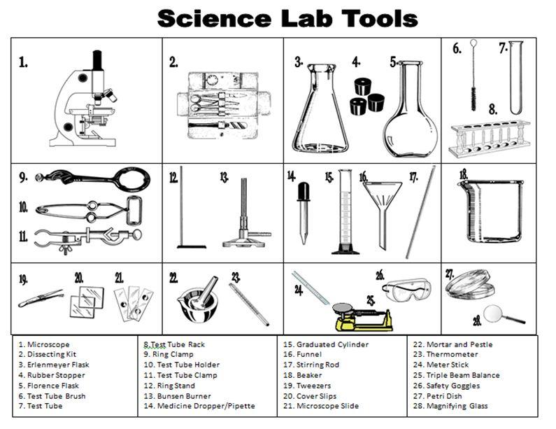 Printables Scientific Measurement Worksheet scientific method practice worksheet plustheapp worksheet