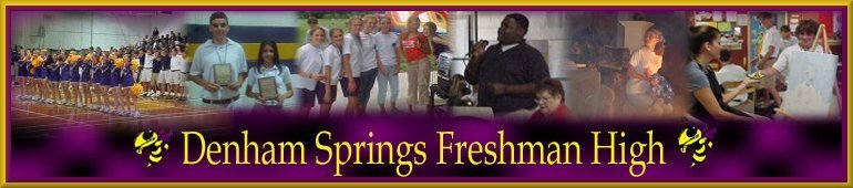 Denham Springs Freshman High Banner